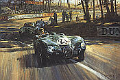 Alan Fearnley: Into the Sunlight, Jaguar XK C-Type