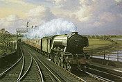 Flying Scotsman tn02