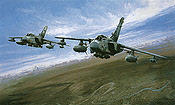 Tornado GR4 - Operation Telic - Michael Rondot